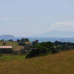 Summer Views '06'