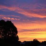 Summer Sunset 5