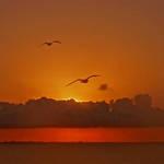 Sunrise Over Corpus Christi Bay