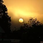Dawn Warmth