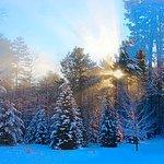 December Sunrise