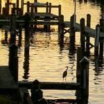dusk on the bay
