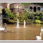 Boy, Swans and Fountain