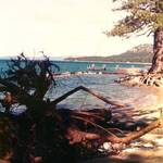Tahoe 1974