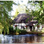 The Cottage On The River In Alresford, Hampshire