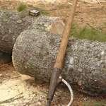 Logging Peavey
