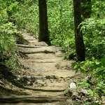 Big Hill trail