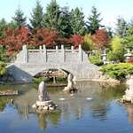 Peaceful Bridge & Fountains Pond scene