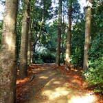 Golden Pathway