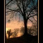 Vale Park Sunset