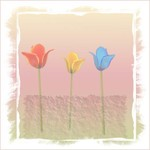 Experimenting - Tulips three