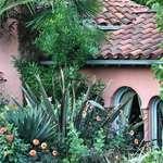 Vancouver house & garden