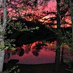 Virginia Sunrise