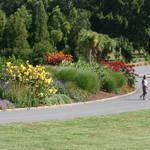A walk in the gardens.