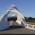 Walkway Bridge 2
