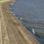 Sea wall