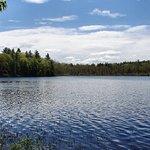 Isinglas Pond