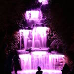 Waterfal purple