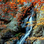 Waterfall in autum