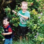 Garden Water sprinkler Fun