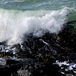 Waves And Sea Weed