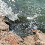 wave crest