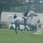 wet pony