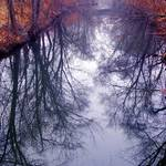 January river reflections 3