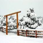 Heavy Mountain Snow